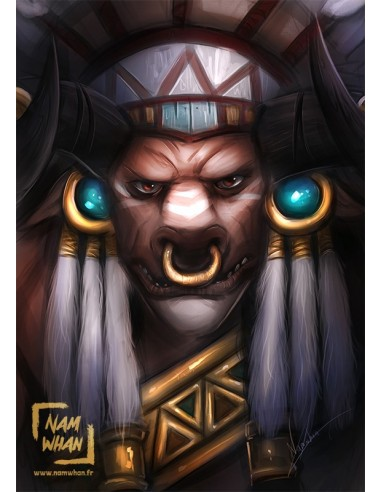 baine bloodhoof world of warcraft pvc canvas namwhan store